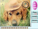 Köpeksayıları bulmaca oyunuile keyifli bir eğlence sizi bekliyor. Sayfamızda köpeksayı bulmacaoyunu ile oynayabilirsiniz. Yeni sayı bulma oyunları